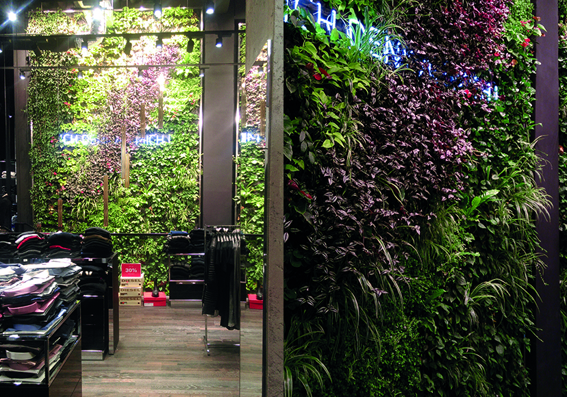 vertikaler - Garten - Beispiele.jpg